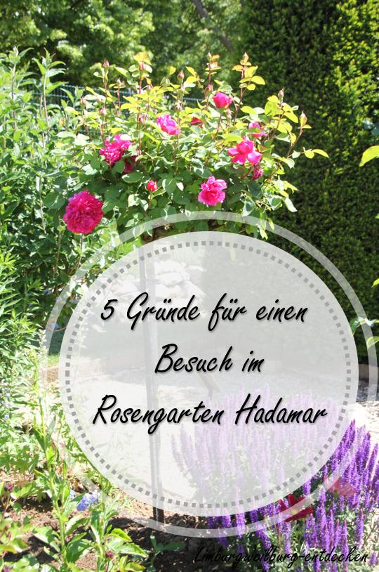 Rosengarten Hadamar