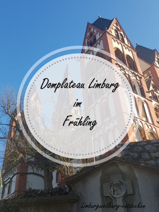 Domplateau Limburg Pinterest