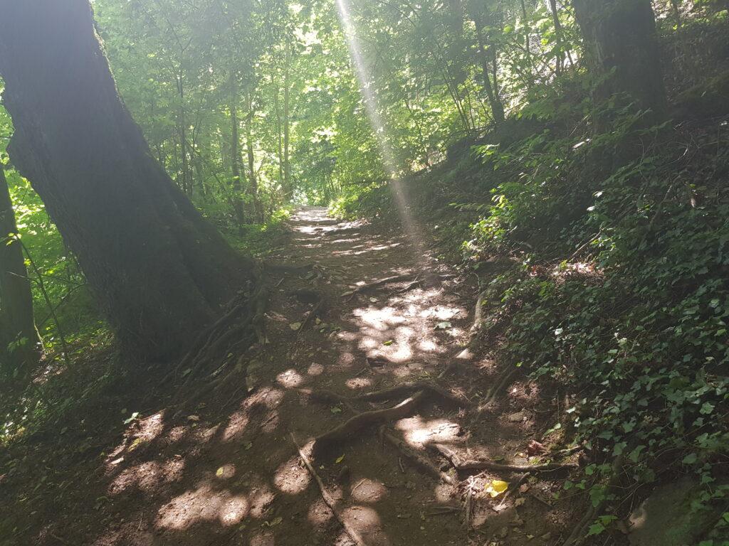 Wanderweg Lahn