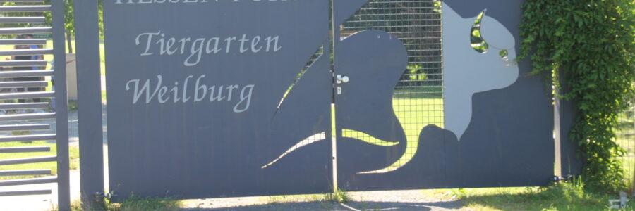 Tierpark Weilburg